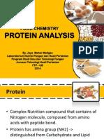 Analisis Protein