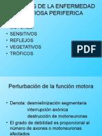 Sintomas de La Enfermedad Nerviosa Periferica