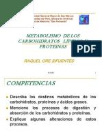 Metabolismo_proteinas