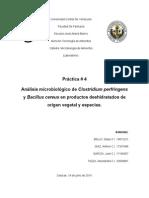 Informe 4 Micro