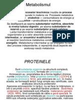 metabolismul protidic