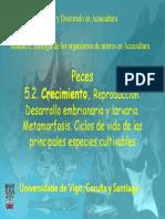 Posgrado-Peces-2-Crecimiento.pdf