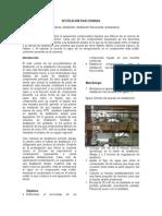 140617682 Laboratorio Destilacion Fraccionada Para Imprimir