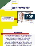Reflejos-Primitivos