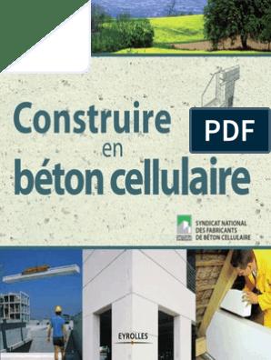 Construire En Béton Cellulaire Chaux Matériau Composite