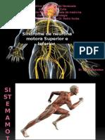 Sx Motoneurona neurologico