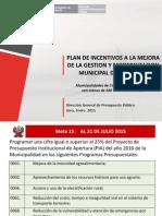 MEF Metas TipoD 2015