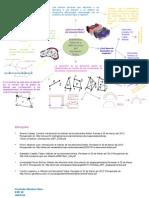 Elementos Basicos y Definiciones Del Elemento Finito