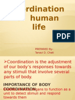 Coordination of human life
