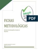 Ficha Metodológica de Indicadores Copia