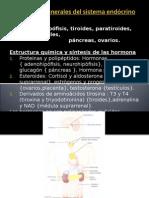 1.Principios Generales Del Sistema Endócrino 1
