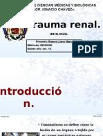 Trauma Renal.