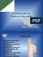 Introducción Al SNC (sistema nervioso)