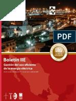 BoletinIIE Gestion Del Uso Eficiente de La Energia 2012