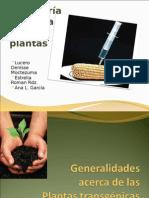 Clase de Ingenieria Genetica de Plantas