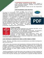 Tratados y Convenios Economicos Del Peru 5