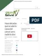Hace Décadas Que Se Sabe La Causa Del Cáncer Pero Nadie Lo Dice _ Salud Natural