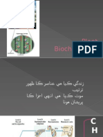 Plant Biochemistry.pptx