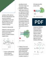 Transcripción de La Información Genética Eucariontes