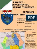 Destinatii Turistice- Muntenia