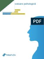 Raport de evaluare DA13profile.pdf