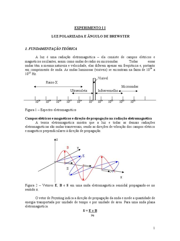 194bda69e2c95 Fis 4 Exp Polarização