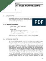 Chapter 13 Straight Lobe Compressor
