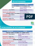 cronograma institucional