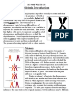 meiosis introductory article