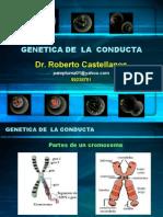 Bases Biologicas Del Comportamiento Clase 3