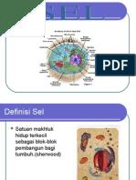 Presentation 1jhl