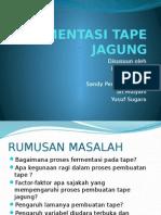 Fermentasi Tape Jagung