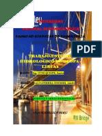 trabajo de puentes y estructuras.pdf