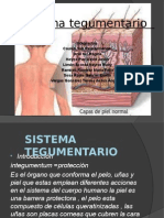 sistema tegumentario.pptx