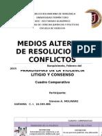 GIOVANN MOLINARO GUEVARA.-Paradigmas Violencia Consenso Litigio