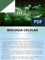 Biologia Celular Terminado