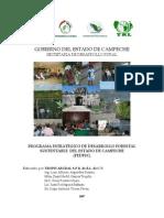 175Programa Estratégico Forestal de Campeche.pdf