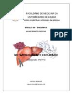 MetabolicamenteExplicado, Miguel Miranda