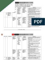 Programacioanual IV Ciclo 2014