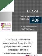 CEAPSI-Talleres