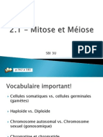 2.1_-_mitose_et_miose