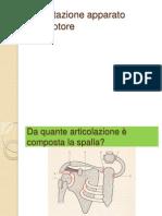 04) Spalla.pdf
