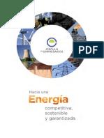 Hacia Una Energia Competitiva Sostenible y Garantizada-circulo de Empresarios-Febrero 2015