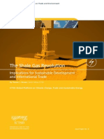 The Shale Gas Revolution Implications for Sustainable Development and International Trade
