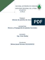 Informe Practica de Viveros