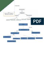 PRACTICA 2 Mapas Conceptuales SOFIA