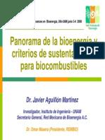 jatropha mexico.pdf