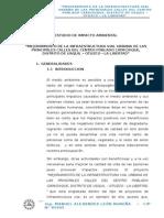 IMPACTO AMBIENTAL CAPACHIQUE
