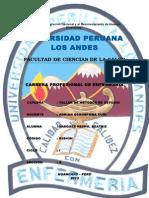 UPLA - ENFERMERIA PORTADA