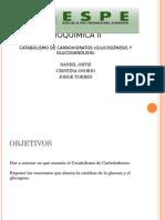 Catabolismo de Carbohidratos.pptx_0